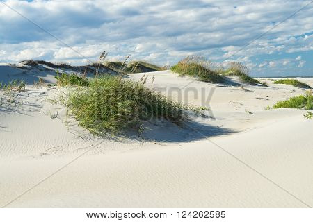 Outer Banks sand dunes and grass along the coast of North Carolina