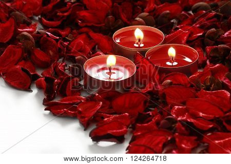 red roses and candles on whiter background with space for your text