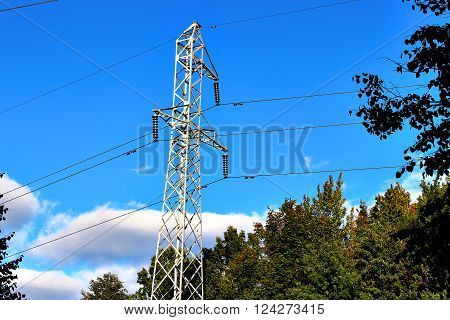 high reliance of power lines in the forest ** Note: Soft Focus at 100%, best at smaller sizes