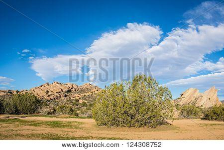 Mojave desert natural wilderness at Vasquez Canyon State Park.