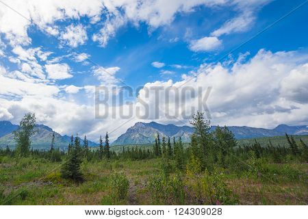 Open meadow in the far north of Alaska with mountains in the distance.