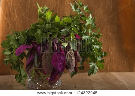 Bunch of red orach with parsley and lovage in glass over old wooden background