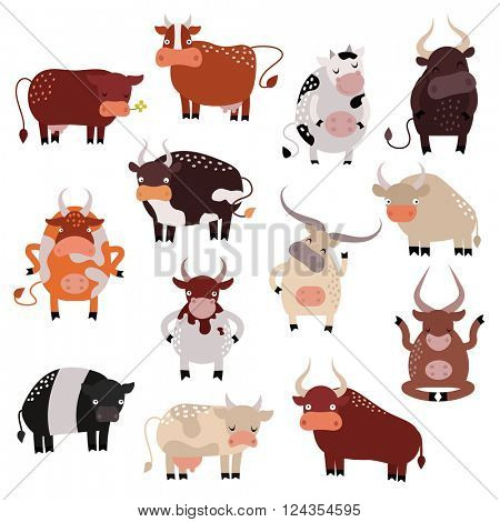 Cartoon cow action set, with cute lovely heifer different in different poses vector.