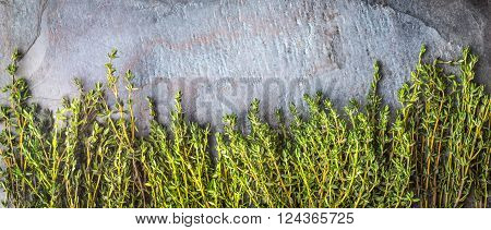 Thyme sprigs on the stone table wide screen