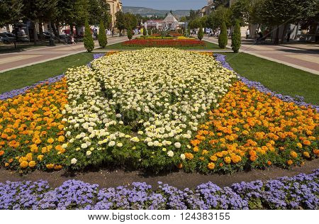 KISLOVODSK,RUSSIA - AUGUST 06,2013: Resort park - ornament and pride of Kislovodsk, Caucasus, Russia on August 06,2013