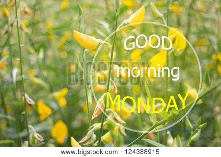 Good mornign monday quote design poster stock photo