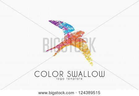 Swallow logo. Color swallow logo design. Bird logo design