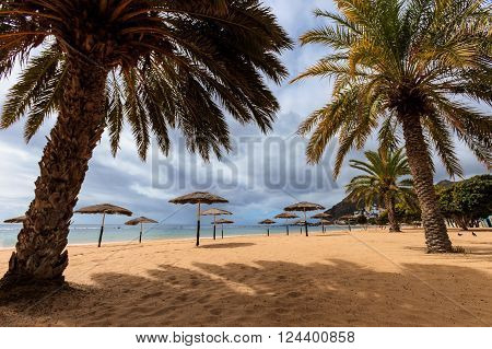 Summer seascape on tropical island Tenerife, Canary in Spain. Playa de Las Teresitas beach with gold sand brought from Sahara desert view.