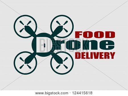 Drone quadrocopter icon. Flat symbol. Vector illustration. Drone food delivery text