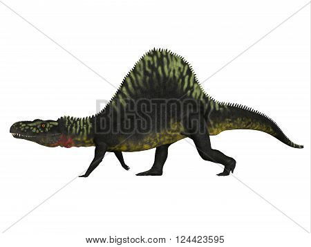 Arizonasaurus Side Profile 3D illustration - Arizonasaurus was a sailback carnivorous archosaur that lived in Arizona North America in the Triassic Period.
