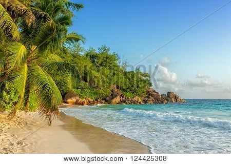 paradisiac anse georgette beach in seychelles praslin island