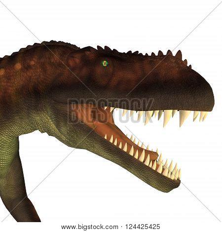 Prestosuchus Dinosaur Head 3D illustration - Prestosuchus was a carnivorous archosaur dinosaur that lived in the Triassic Period of Brazil.