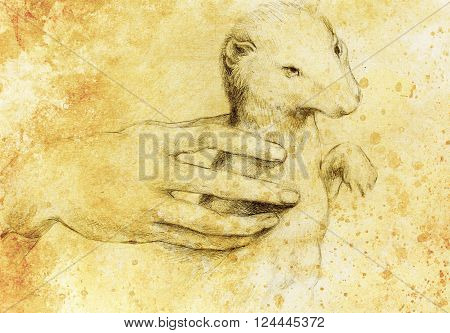 drawing according Leonaqrdo daVinci , detail with hand touching stoat