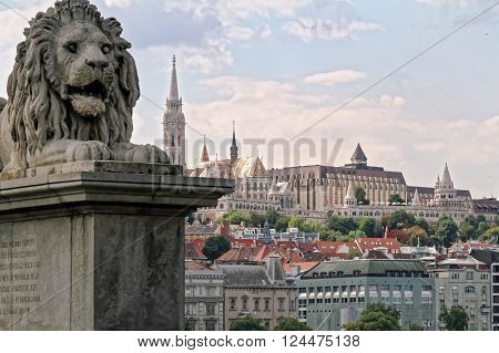 A lion of the Szechenyi Chain Bridge in Budapest Hungary with the Matthias Church and the Fisherman's Bastion in the background