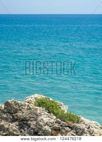 Short green grass tenaciously holding rough and hard rocks by dark blue Mediterranean Sea under strong summer light. Taken at Antalya Turkey.