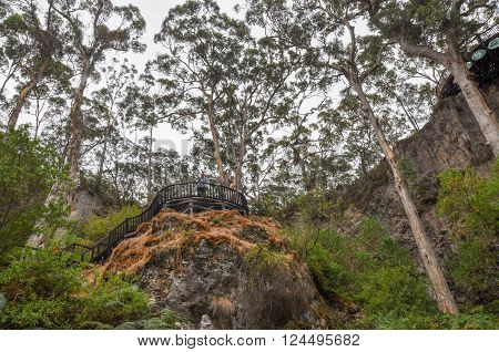 MARGARET RIVER,WA,AUSTRALIA-JANUARY 17,2016: Tourists on the Lake Cave overlook at the sunken Karri tree forest with limestone cliffs at the tourist attraction in Margaret River, Western Australia.
