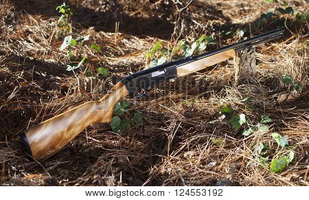 Rimfire rifle that shoots twenty two ammunition on a forest floor