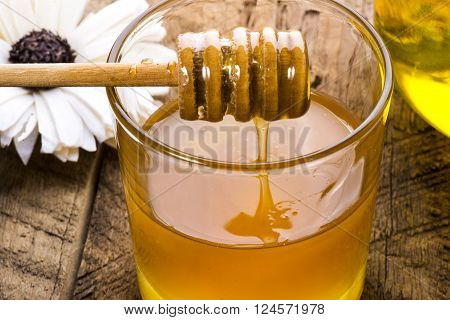 fragrant spring honey samples in the bank for a close-up on a background of an old tree