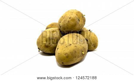 A russet potato on isolated white background