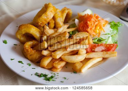 Fresh deepfried roman style squid served with fries and salad in local restaurant in Los Gigantes on tropical island Tenerife Canary in Spain. Spanish food specialities.