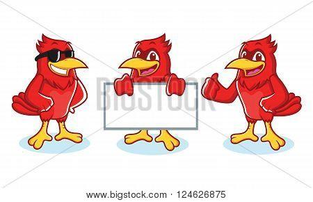 Cardinal Mascot vector happy pose and bring board