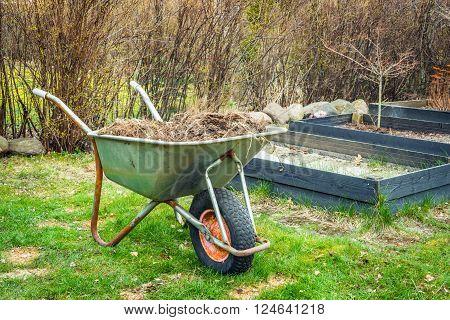 Wheelbarrow With Garden Waste