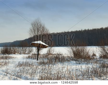 Beach on the lake in winter. Photographed at variable cloudiness