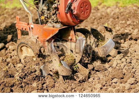 Preparing garden soil with cultivator tiller new seeding season on home vegetable farm