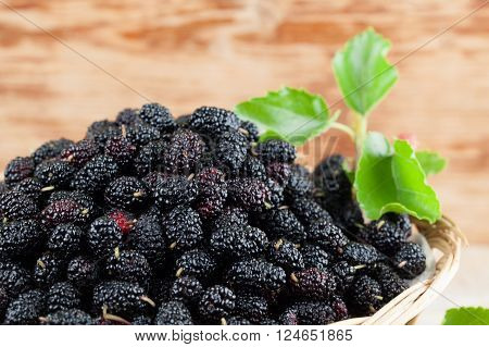 Fresh black mulberries in a basket. Shallow dof