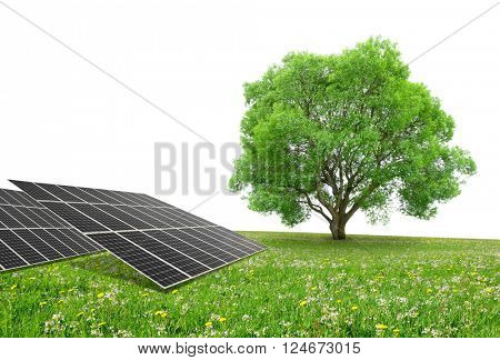 Solar energy panels with tree on meadow. Clean energy.