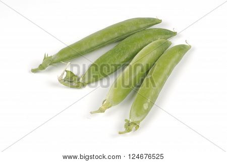 one pea in the studio on white background
