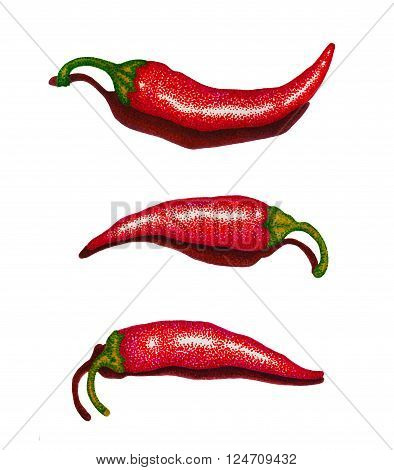 Red Chili Peppers set felt pen illustration