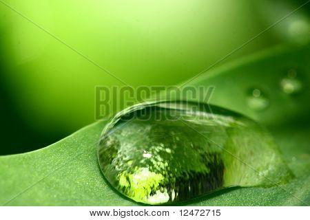 natuurlijke waterdrop
