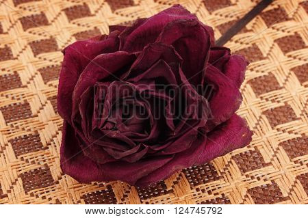 Dead dried red rose on wicker background