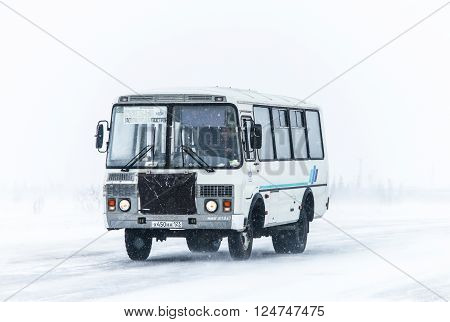 NOVYY URENGOY RUSSIA - MARCH 20 2016: Off-road bus PAZ 3206 at the interurban freeway during a heavy northern blizzard.