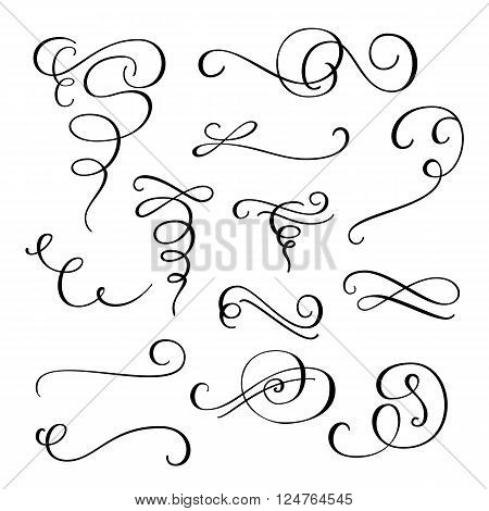 Flourish swirl ornate decoration for pointed pen ink calligraphy style. Quill pen flourishes. For calligraphy graphic design postcard menu wedding invitation romantic style.