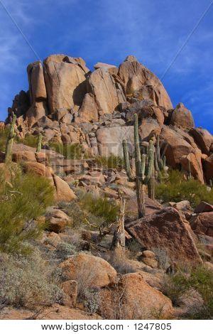 Vertical Desert Scenic