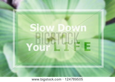 Slow down your life inspirational quote on blurred background