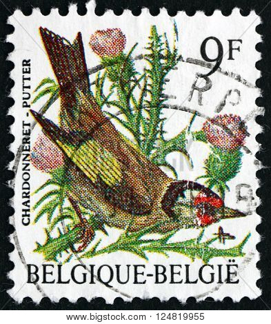 BELGIUM - CIRCA 1985: a stamp printed in the Belgium shows European Goldfinch Carduelis Carduelis small Passerine Bird circa 1985