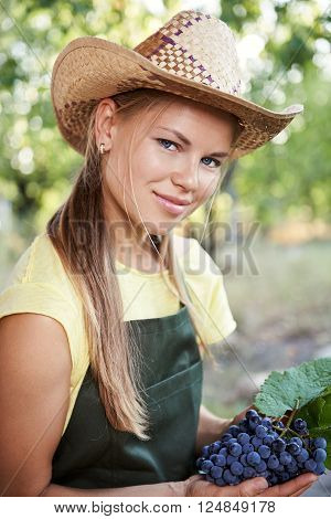 Female farmer in apron and hat holding fresh grapevine in the country. Wine industry concept.
