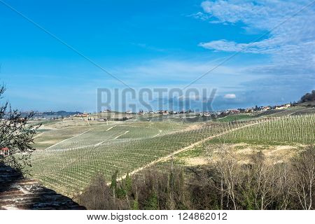 Langhe,Cuneo,Italy,Europe - March 20, 2016 : Panoramic view of vineyards and hills in Langhe Roero region