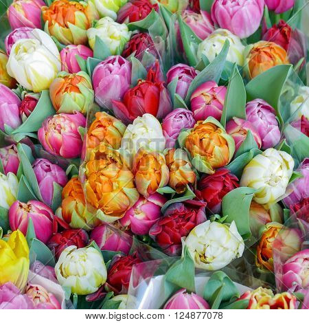 Bouquets with tulips for sale in Rotterdam Netherlands.