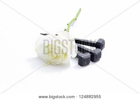 Jesus Christ nails from the Crucifixion and white rose on a white background.