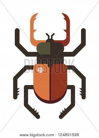 Colorful insects vector stag beetle. Insects biology natural isolated on white background. Insects isolated illustration. Insects vector icon. Fly insects micro view vector. Stag beetle bug insect silhouette