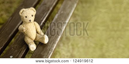 Website banner of a toy bear giving his paw