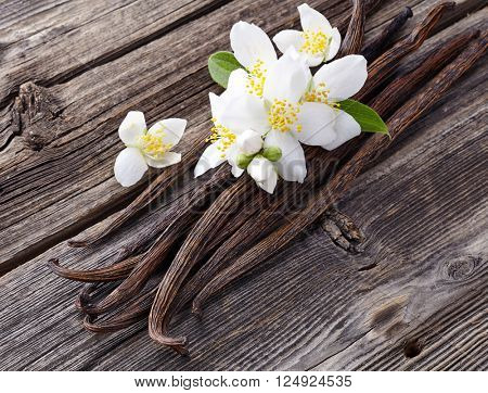 Vanilla with jasmine flowers