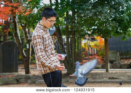 MATSUMOTO JAPAN - NOVEMBER 21 2015: Unidentified Japanese feeds pigeons on Yohashira shrine's ground