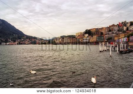 Coast Lugano in Switzerland. View of Lugano lake with swans, city buildings, mountain and cloudy sky. Lugano. Switzerland.
