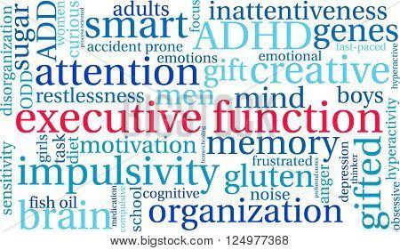 14601255651624-executivefunction_19.eps