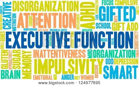14601255651898-executivefunction_4.eps